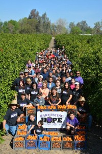 Mission Oak High School students Harvesting Hope.